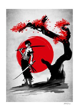 Swordsman Pirate