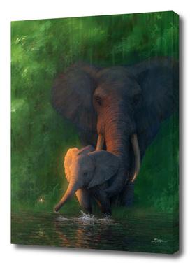 Evening Elephants
