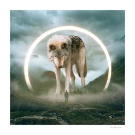 Aegis | Wolf