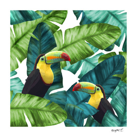 Toucans Tropical Banana Leaves Pattern