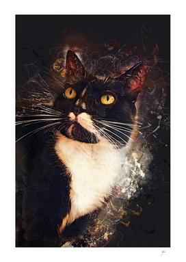 cat Jagoda
