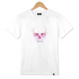 Skull in triangle