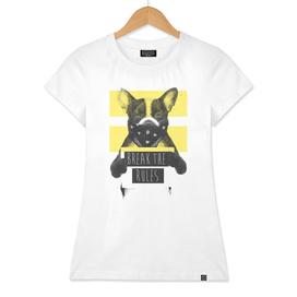 Rebel dog (yellow)