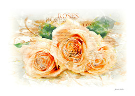 Roses / Flowers, Close-Up - Watercolors, Splash