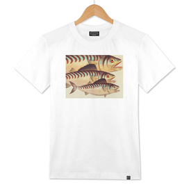 Fish Classic Designs 8