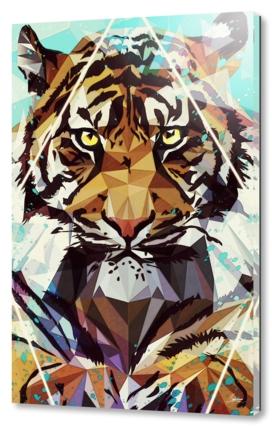 It Tiger