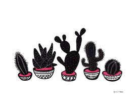 cactus row