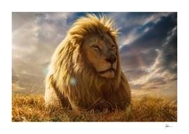 The Big King of Savannah