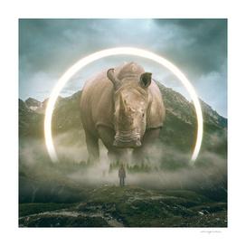 Aegis | Rhino