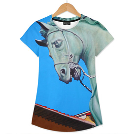 Cavallo di Cosimo