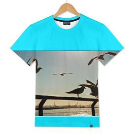 Americana - Pier 17 - Seagulls - Manhatten - NYC