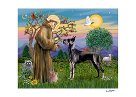 Saint Francis Blesses a Black Great Dane