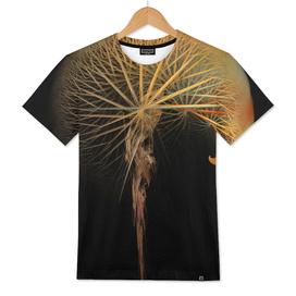 dandelion fractal art