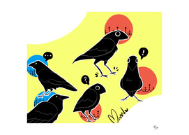 Cartoony Crows
