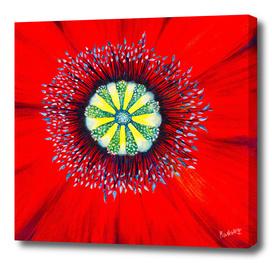 Poppy - Macrocosmos by Marta Hilgert CraftiesPot