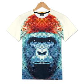 Gorilla - Colorful Animals