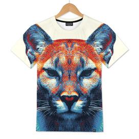 Puma - Colorful Animals