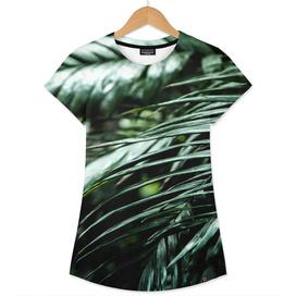 Tropical leaves 02