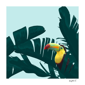 Green Toucan Tropical Banana Leaves Pattern