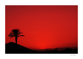 Red Andalusian sunset with silhouette palm tree and mountain