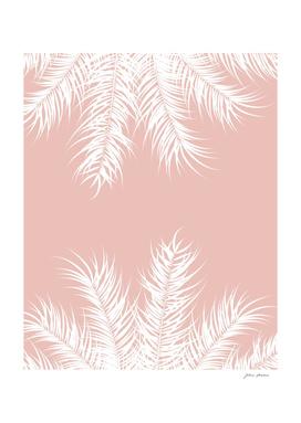 Tropical design 008