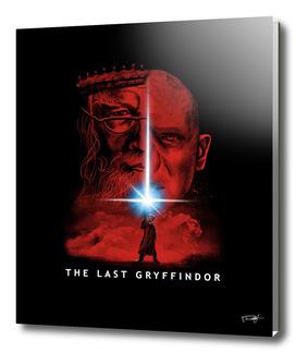 The Last Wizard
