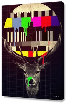 No more signal