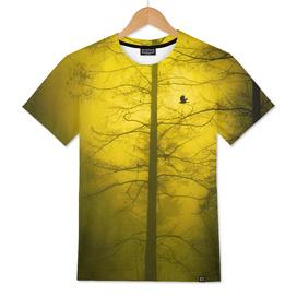 amarillo - yellow - gelb