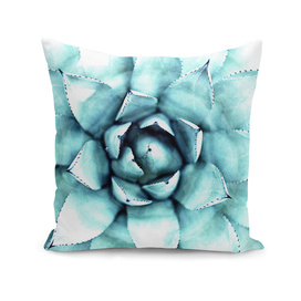 Succulent - A Watercolour Mandala
