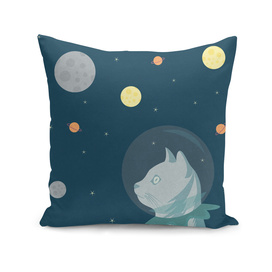 Dreaming about Space