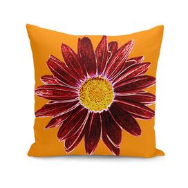 Daisy Love - Red-Yellow