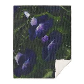 Wild Flowers - Bean