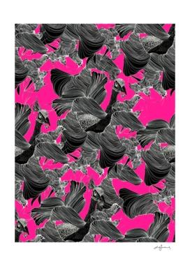 pavone nero