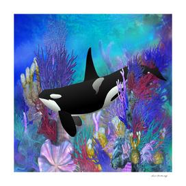 Underwater Orca Coral Reef