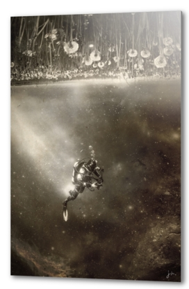 Space collection : the Diver