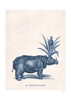 Le Rhinonanas
