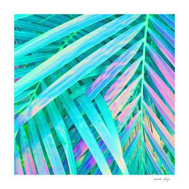 Palms Green