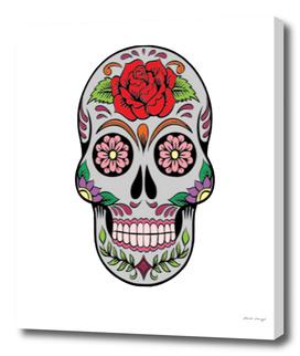 Skull 5aa