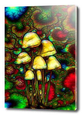 Magic psychedelic mushrooms