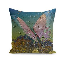 Raindrops-Madagascar Mocker Swallowtail Butterfly