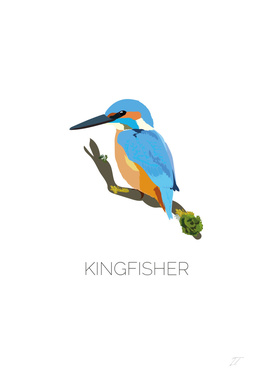 Kingfisher Bird Art Print