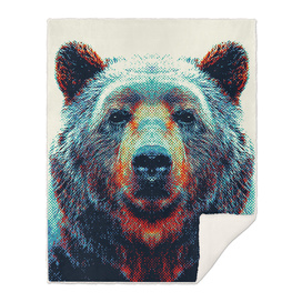 Bear - Colorful Animals