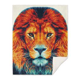 Lion - Colorful Animals