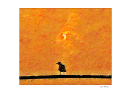 Crow and red Sun