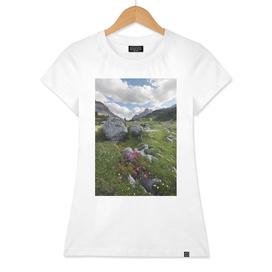 Fanes Meadow