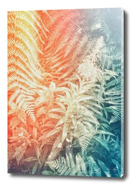 Fern and Fireweed 02 - Retro
