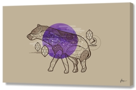 in the forest where you sleep hyena minimal