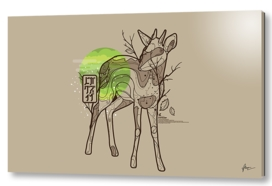 in the forest where you sleep antelope minimal