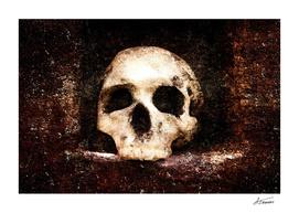 Old Skull - Memento Halloween