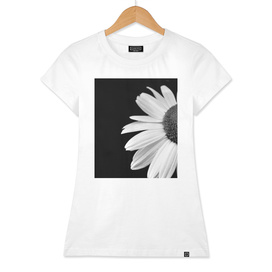 Half Daisy In Black And White